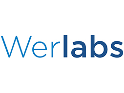 Werlabs Black Friday